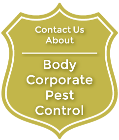 bodycorp.png
