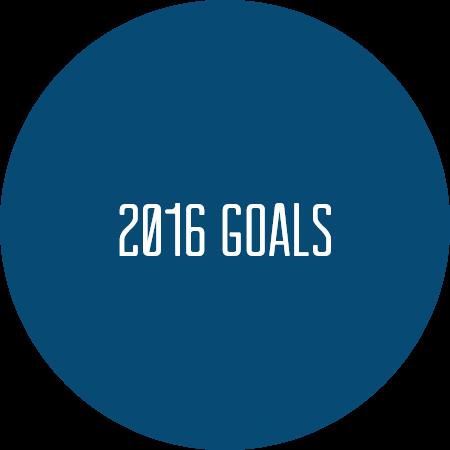 2016 goals.png