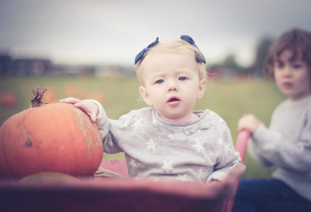 Family-photography-liverpool-church-view-farm-pumkin-picking-27.jpg