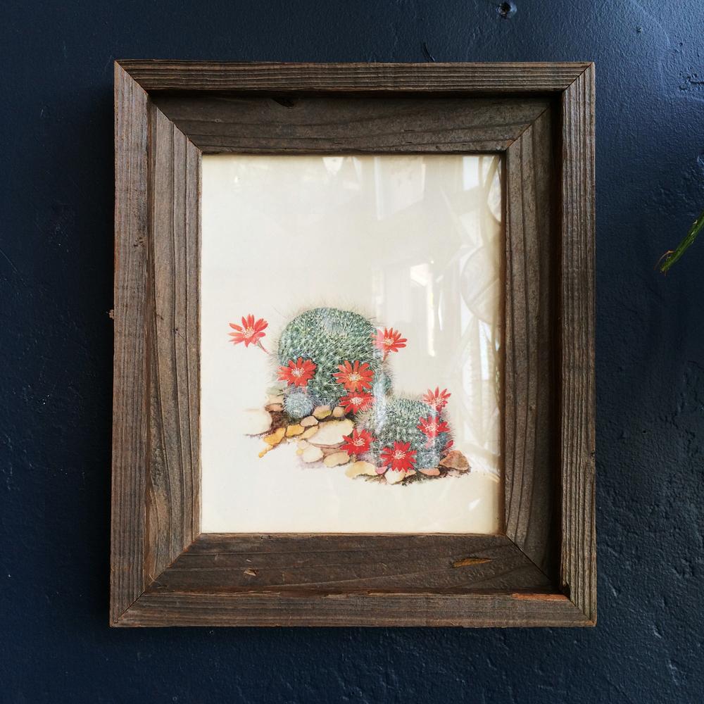 frame_botanical.jpg