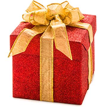 Gift_Cropped_300_sq.jpg
