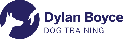 Dylan Boyce Dog Training