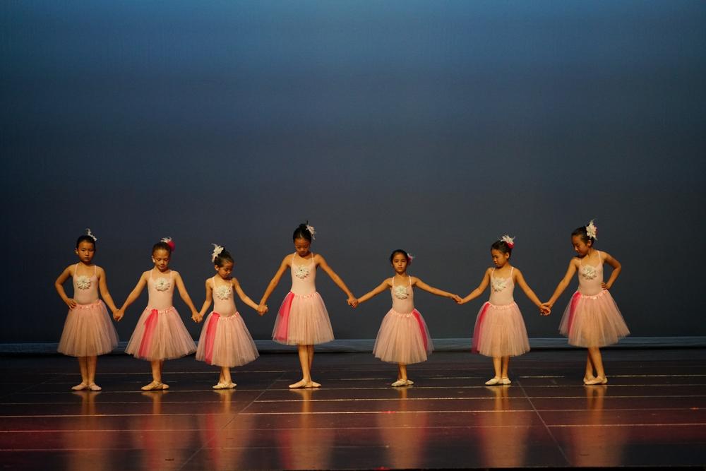 Little Swans, Intermediate Ballet