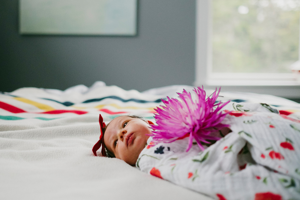 halifax family newborn photographer