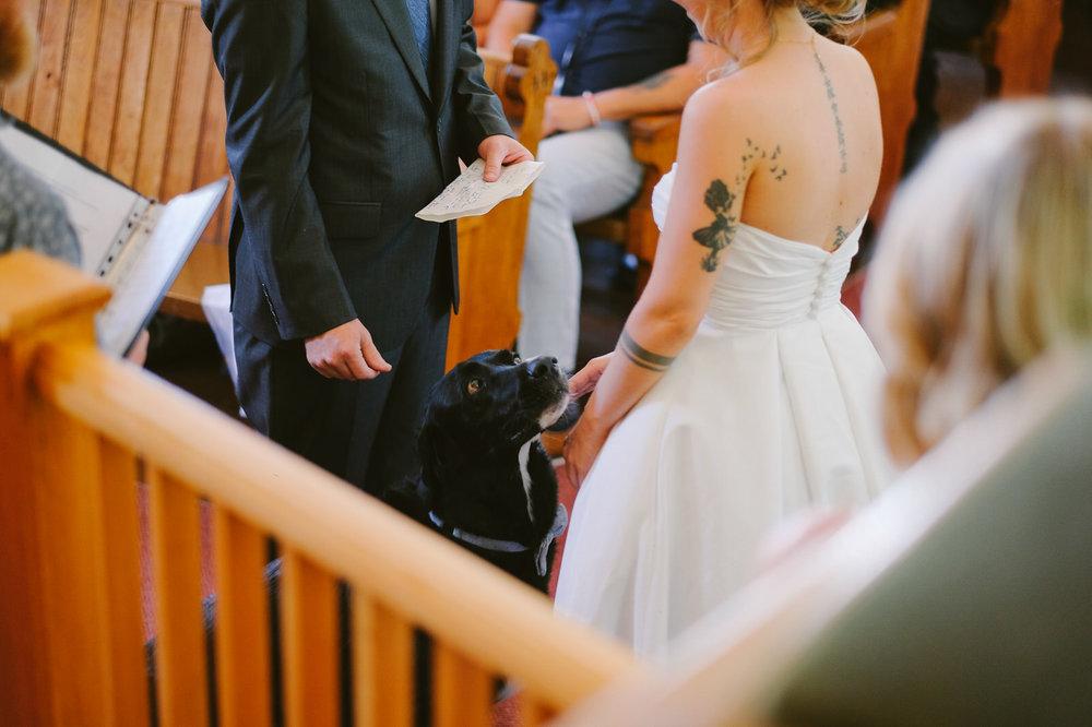 Warwick Mountain Tatamagouche Nova Scotia Wedding Evan McMaster-72.jpg