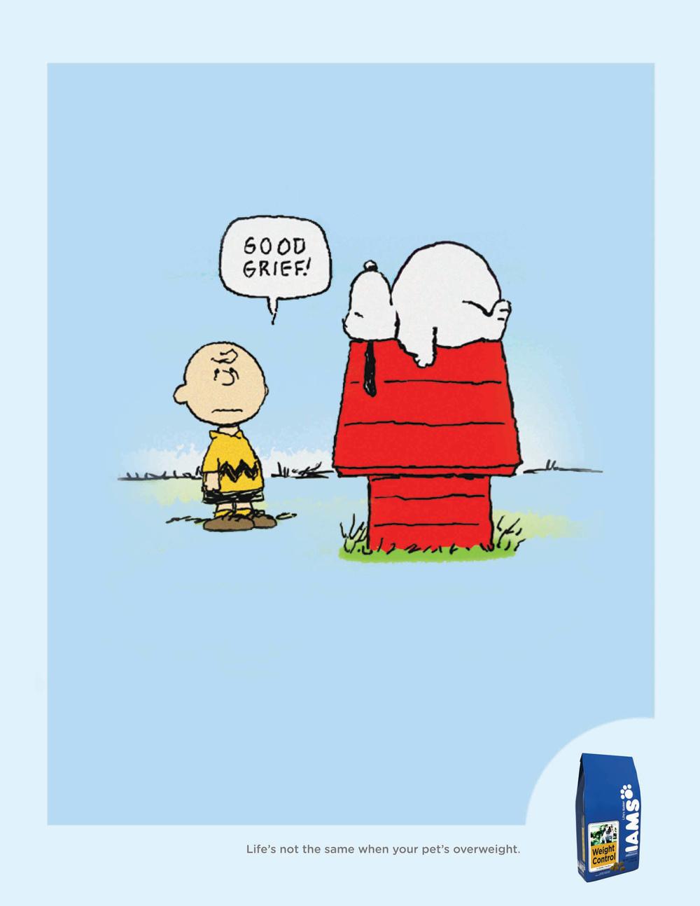 IAMS Snoopy.jpg