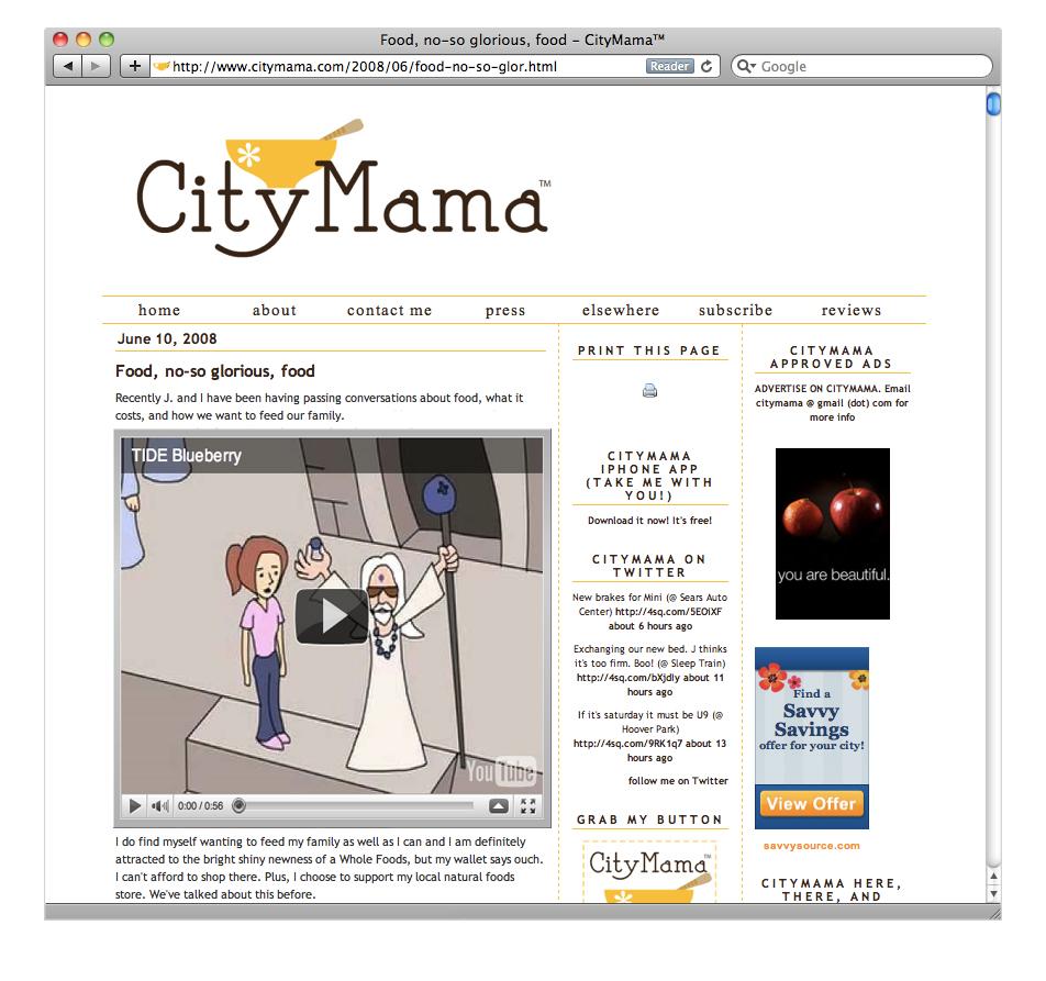 TIDE Blueberry (City Mama).jpg