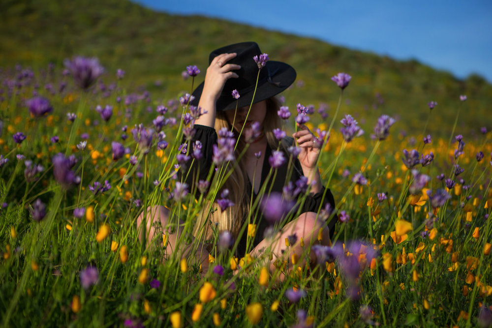 AstroBandit_Superbloom_CaliforniaPoppies_LackOfColor_5.jpg