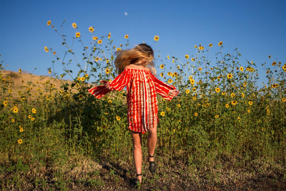 astrobandit_hemantandnandita_sunflowers_1.jpg