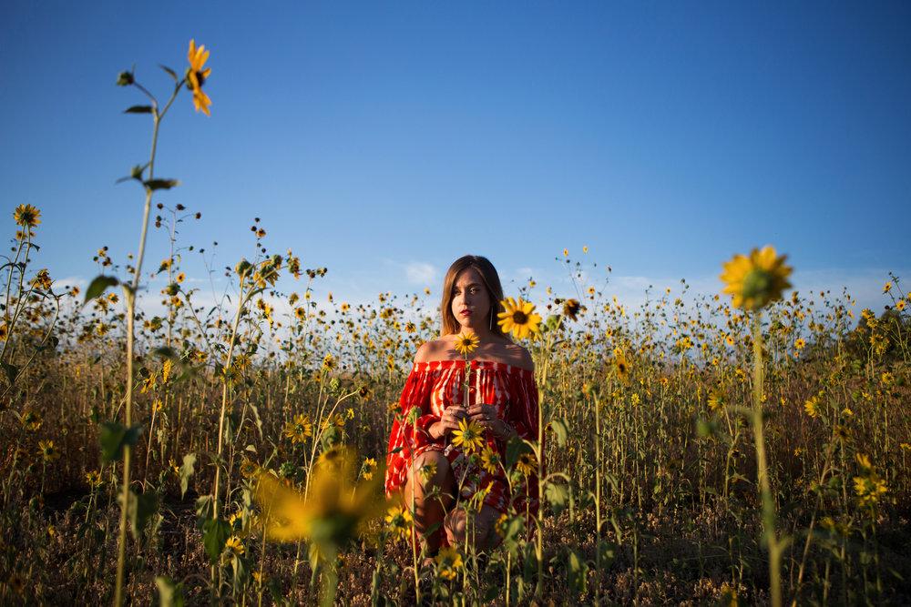 astrobandit_hemantandnandita_sunflowers_6.jpg