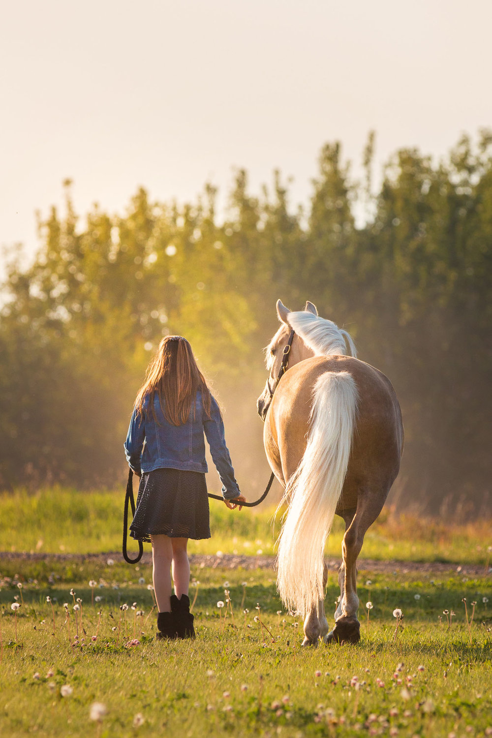 Girl and horse walking