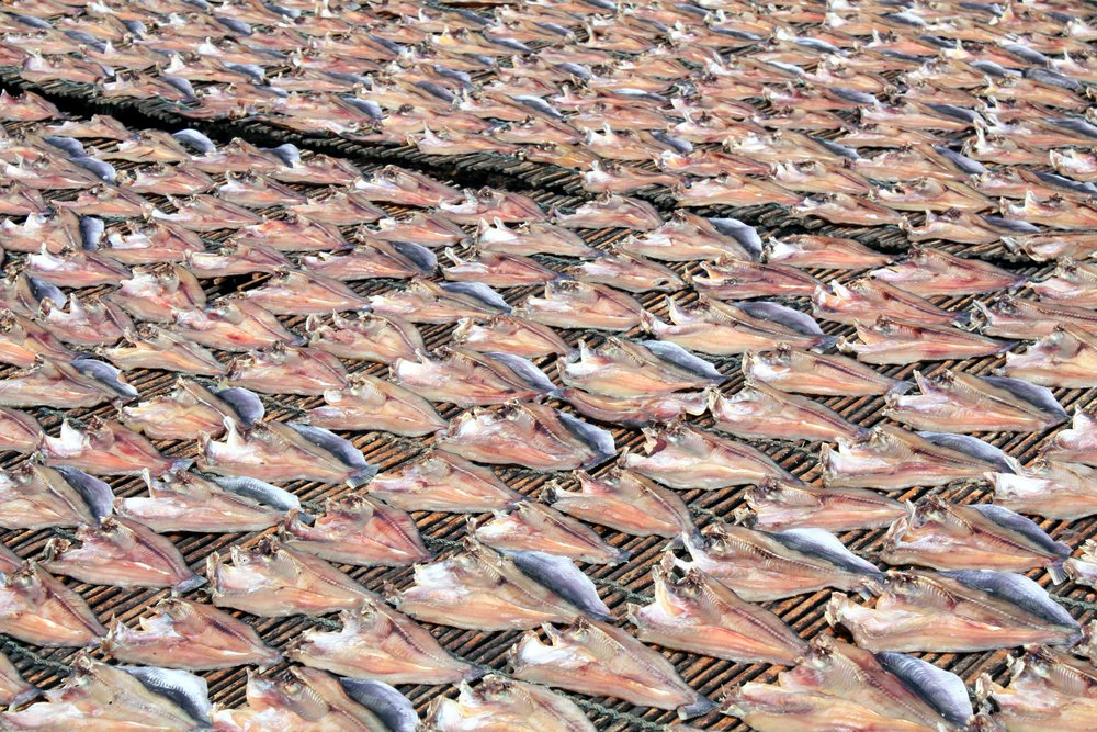 Cambodia's got an overabundant supply of fresh water fish, so they process them through drying or fermenting. It is found everywhere in traditional Khmer cuisine.