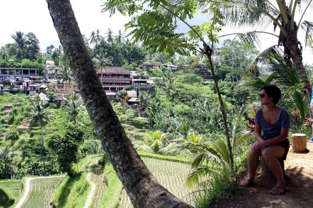 Tagalalang Rice Terraces in Ubud
