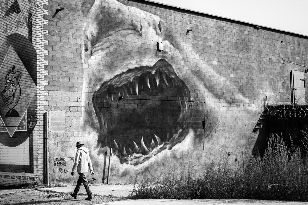 Shark Toof BW (Leica).jpg