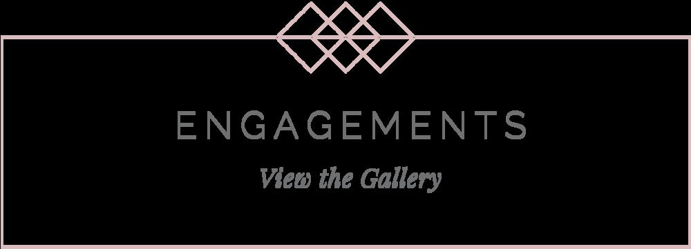 indiana wedding photographer engagement gallery