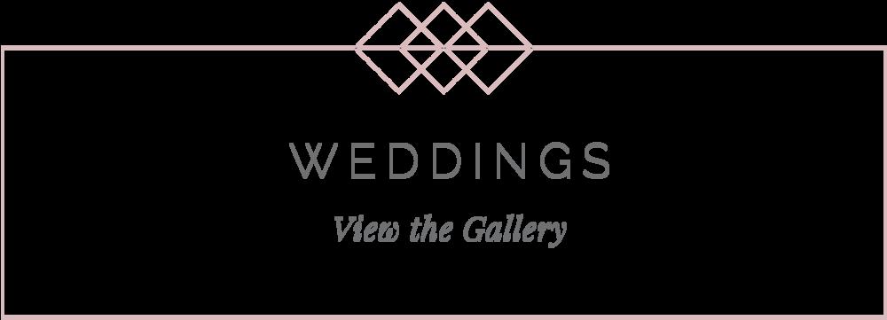 indiana wedding photographer wedding gallery