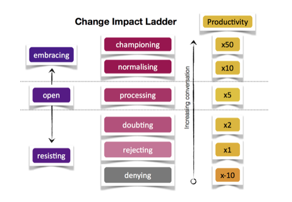anneli-blundell-change-impact-ladder.png