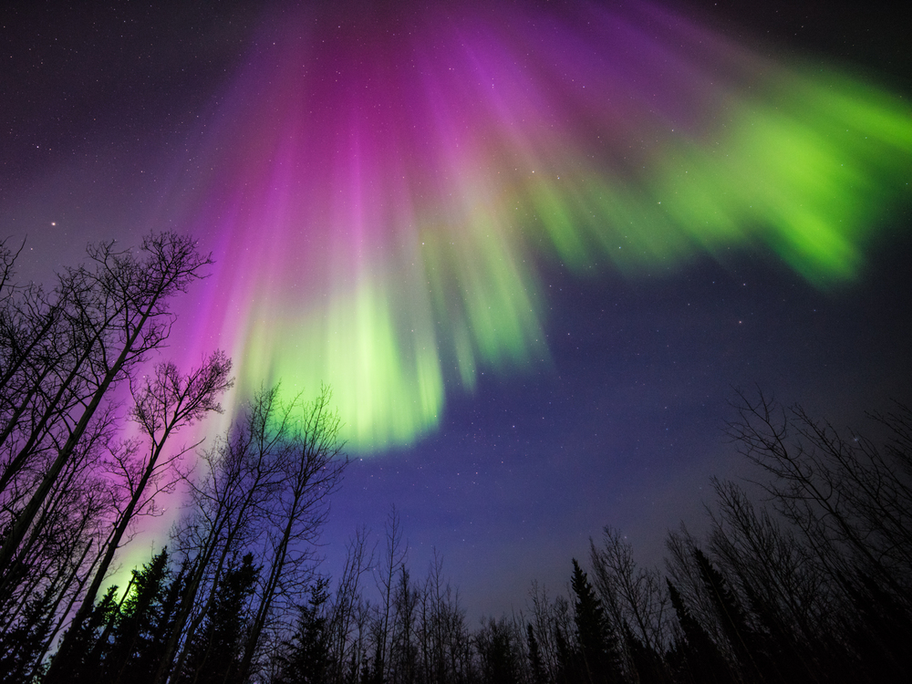 This image of a colorful aurora was taken in Delta Junction, Alaska, on April 10, 2015. All auroras are created by energetic electrons, which rain down from Earth's magnetic bubble and interact with particles in the upper atmosphere to create glowing lights that stretch across the sky. - Credits: Image courtesy of Sebastian Saarloos
