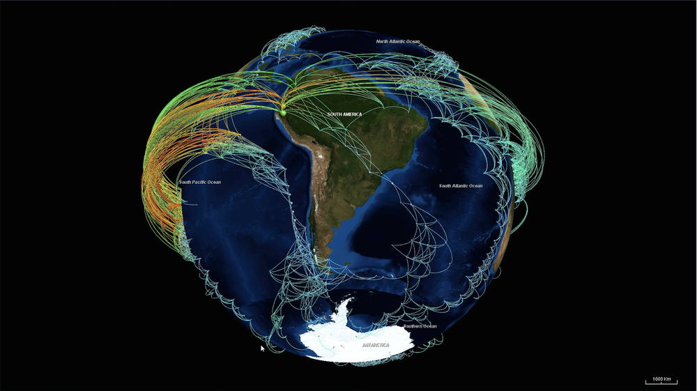Climate network visualization revealing the backbone structure of strong statistical interrelations (links) between surface air temperature time series (nodes) all over the globe with features including the tropical Walker circulation and surface ocean currents.