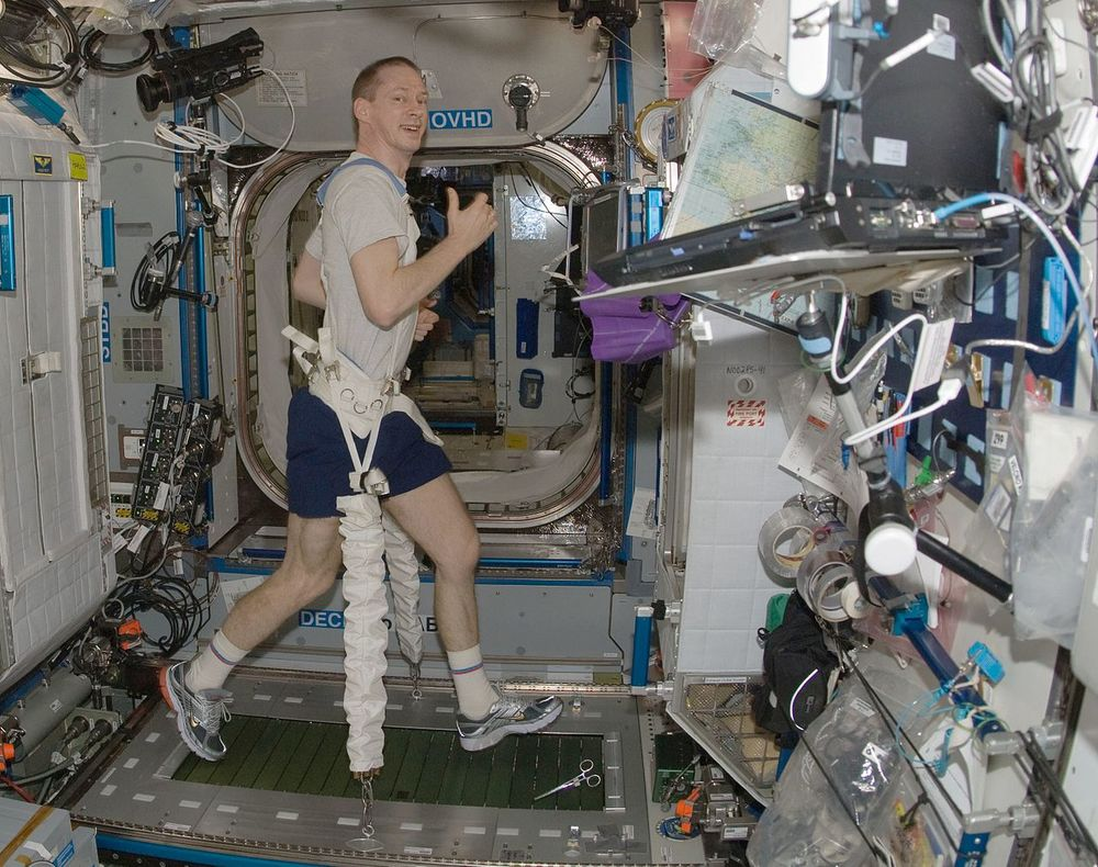 Astronaut Frank De Winne -Image Credit: NASA/wikimedia
