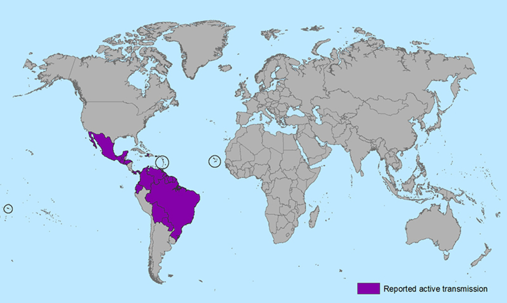 Countries and territories with active Zika virus transmission. - Image Credit:  Centers for Disease Control and Prevention