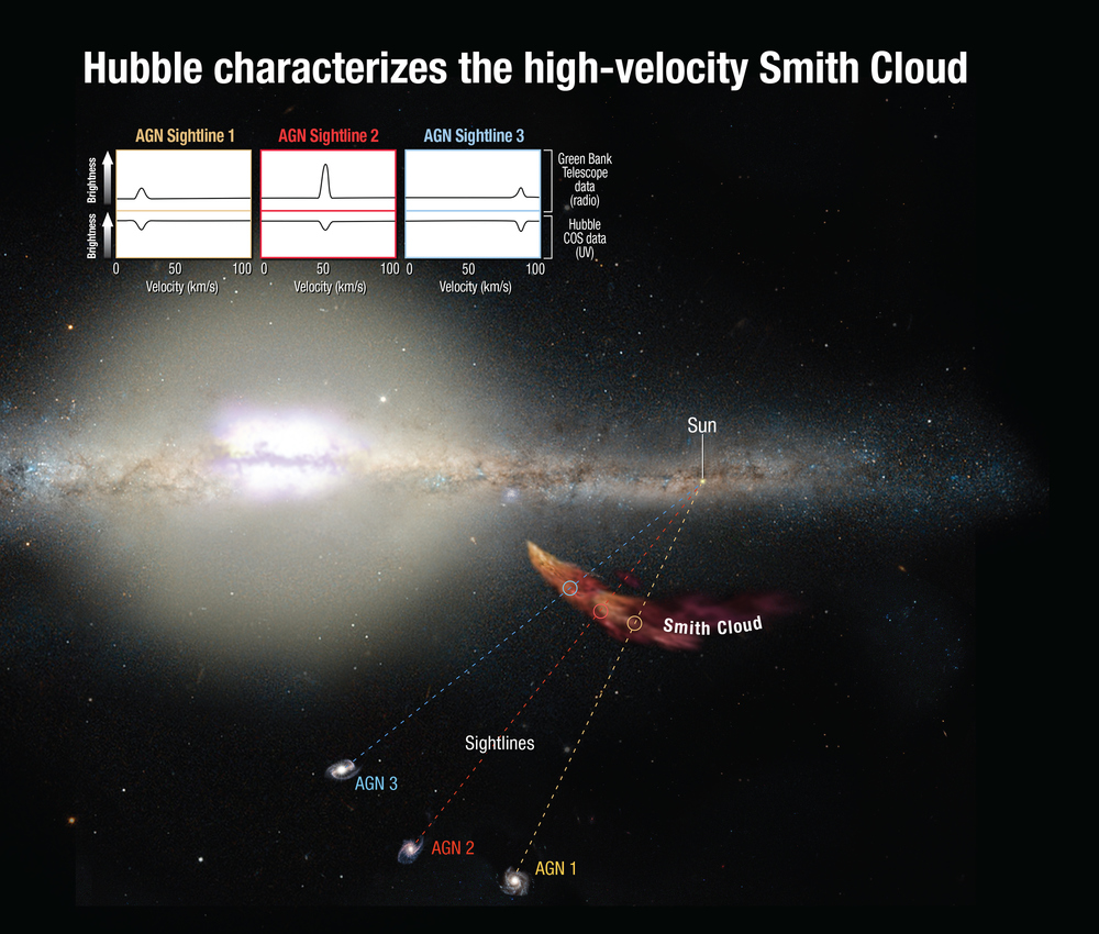 Hubble's Cosmic Origins Spectrograph can measure how the light from distant background objects is affected as it passes through the cloud, yielding clues to the chemical composition of the cloud. Astronomers trace the cloud's origin to the disk of our Milky Way. Combined ultraviolet and radio observations correlate to the cloud's infall velocities, providing solid evidence that the spectral features link to the cloud's dynamics. – Image Credits: NASA/ESA/A. Feild (STScI)
