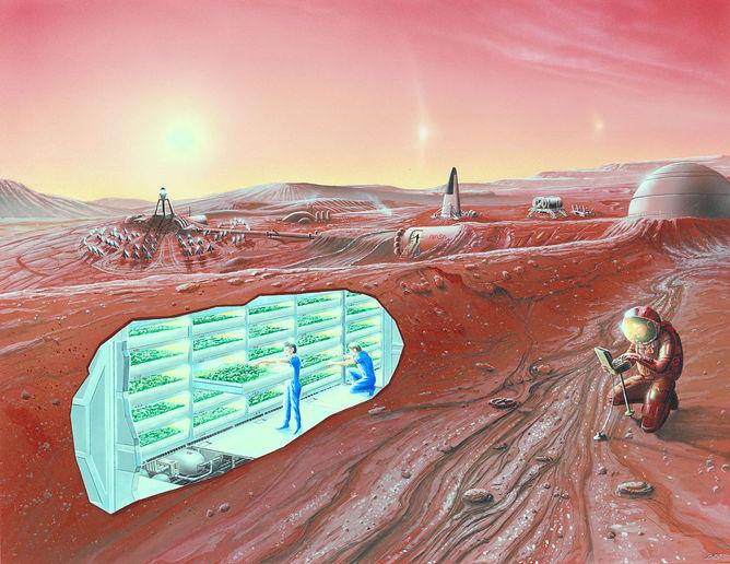 Hydroponics. - Image Credit: NASA