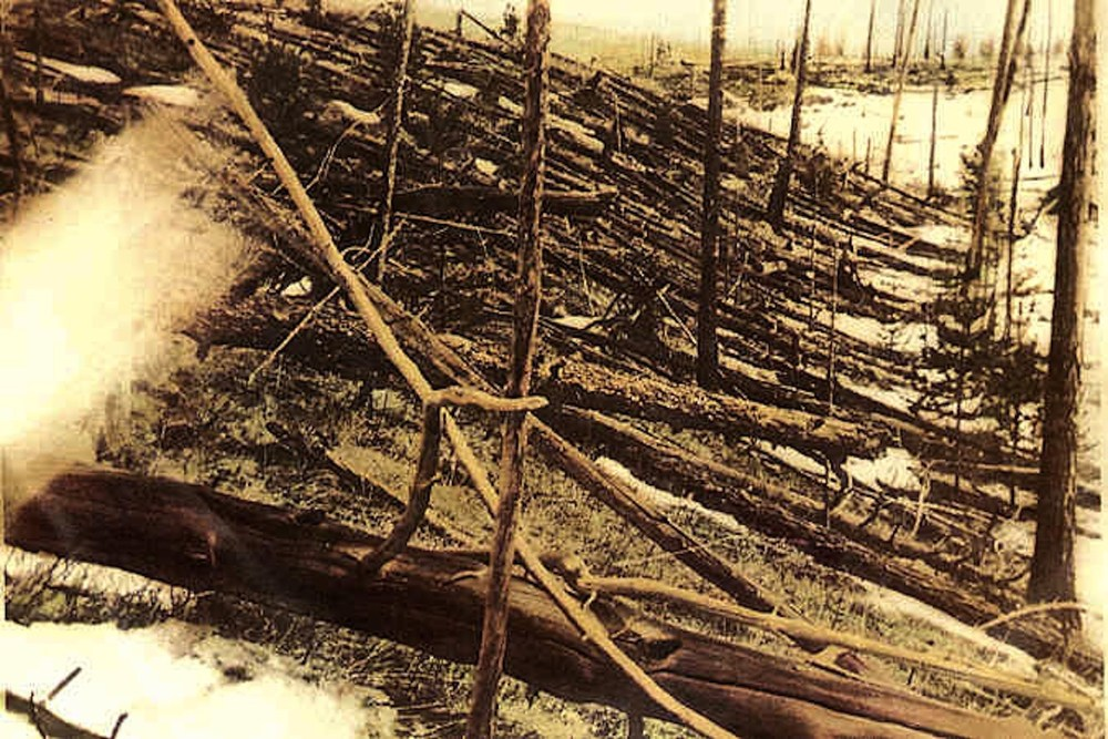 Trees knocked over by the Tunguska blast. - Image Credit: Leonid Kulik/wikimedia