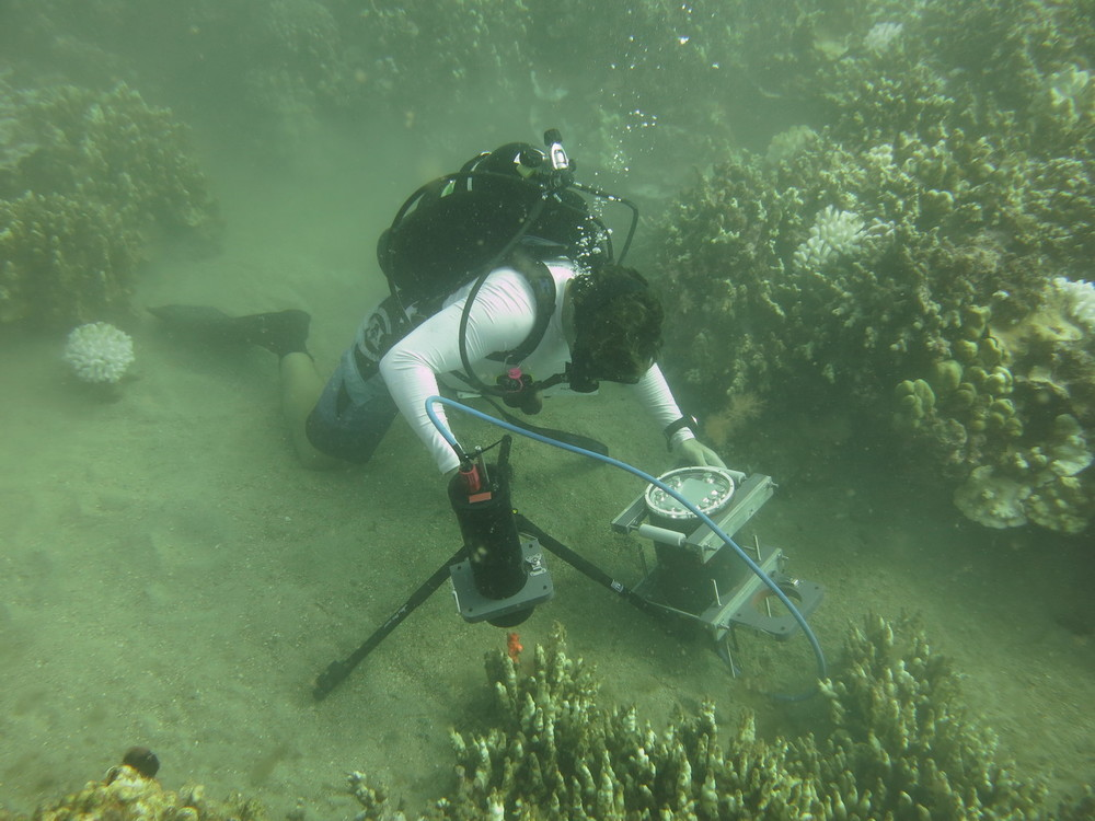 Andrew Mullen deploys the BUM during coral reef studies in Maui. - Image Credit: Emily L. A. Kelly/UCSD,  CC BY-ND