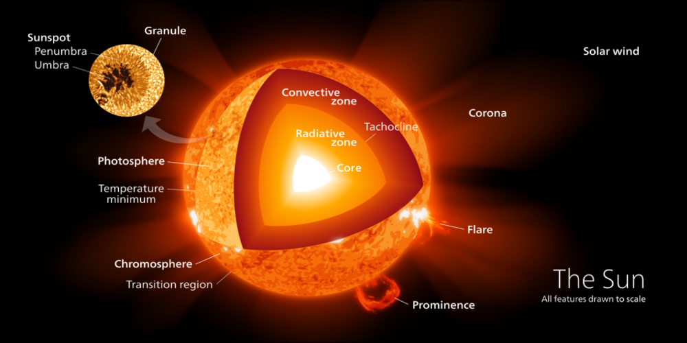 The interior structure of the Sun. – Image Credit: Wikimedia/Commons/kelvinsong