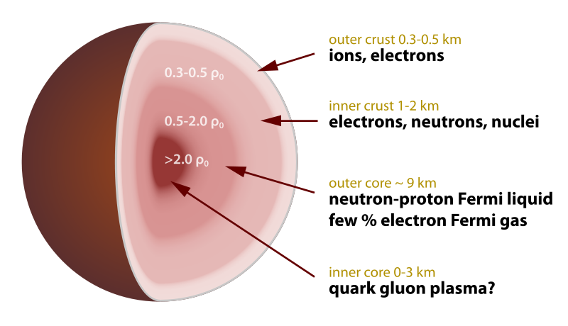 Cross-section of a neutron star. Credit: Wikipedia Commons/Robert Schulz