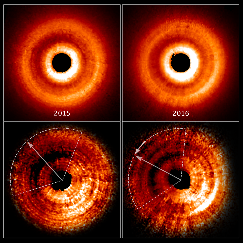 These images, taken a year apart by NASA's Hubble Space Telescope, reveal a shadow moving counterclockwise around a gas-and-dust disk encircling the young star TW Hydrae. The two images at the top, taken by the Space Telescope Imaging Spectrograph, show an uneven brightness across the disk. Through enhanced image processing (images at bottom), the darkening becomes even more apparent. These enhanced images allowed astronomers to determine the reason for the changes in brightness. The dimmer areas of the disk, at top left, are caused by a shadow spreading across the outer disk. The dotted lines approximate the shadow's coverage. The long arrows show how far the shadow has moved in a year (from 2015-2016), which is roughly 20 degrees. Based on Hubble archival data, astronomers determined that the shadow completes a rotation around the central star every 16 years. They know the feature is a shadow because dust and gas in the disk do not orbit the star nearly that quickly. So, the feature must not be part of the physical disk. The shadow may be caused by the gravitational effect of an unseen planet orbiting close to the star. The planet pulls up material from the main disk, creating a warped inner disk. The twisted disk blocks light from the star and casts a shadow onto the disk's outer region. – Image Credit: NASA, ESa, and J. Debes (STScl)
