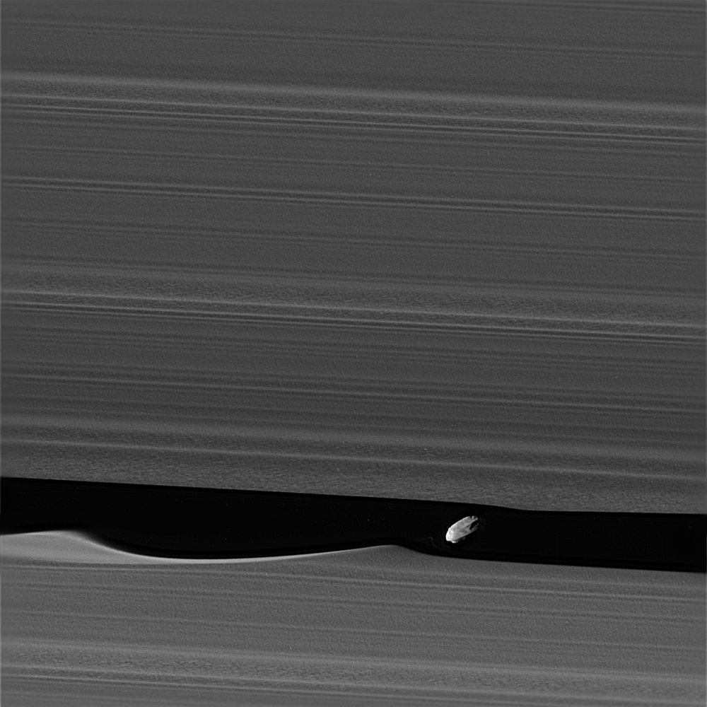 The wavemaker moon, Daphnis, is featured in this view, taken as NASA's Cassini spacecraft made one of its ring-grazing passes over the outer edges of Saturn's rings on Jan. 16, 2017. This is the closest view of the small moon obtained yet. Daphnis is 5 miles or 8 kilometers across. - Image Credit: NASA/JPL-Caltech/Space Science Institute