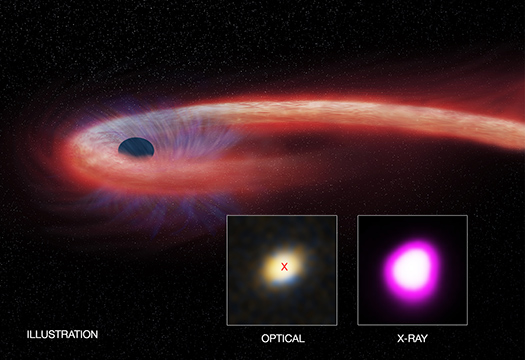 A trio of X-ray observatories has captured a decade-long eating binge by a black hole almost two billion light years away. Credit: X-ray: NASA/CXC/UNH/D.Lin et al, Optical: CFHT, Illustration: NASA/CXC/M.Weiss.