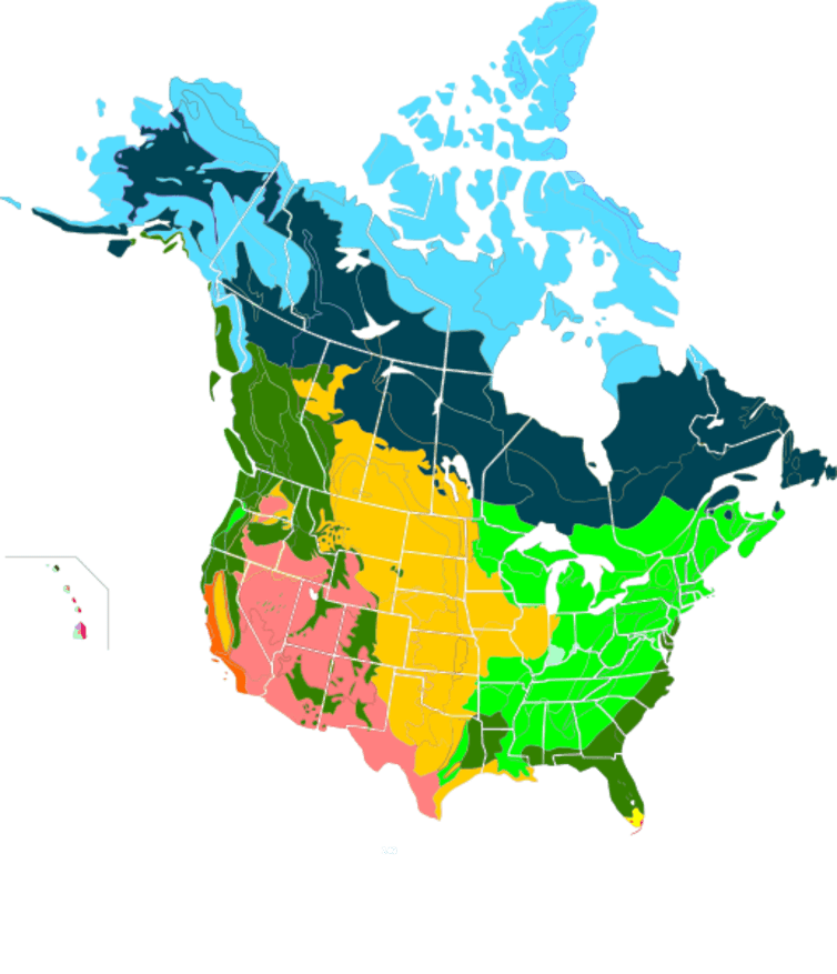 The taiga and boreal forest regions of Alaska and Canada (dark blue) are critical breeding grounds for billions of North American birds. - Image Credit:  Cephas/Wikimedia ,  CC BY-SA