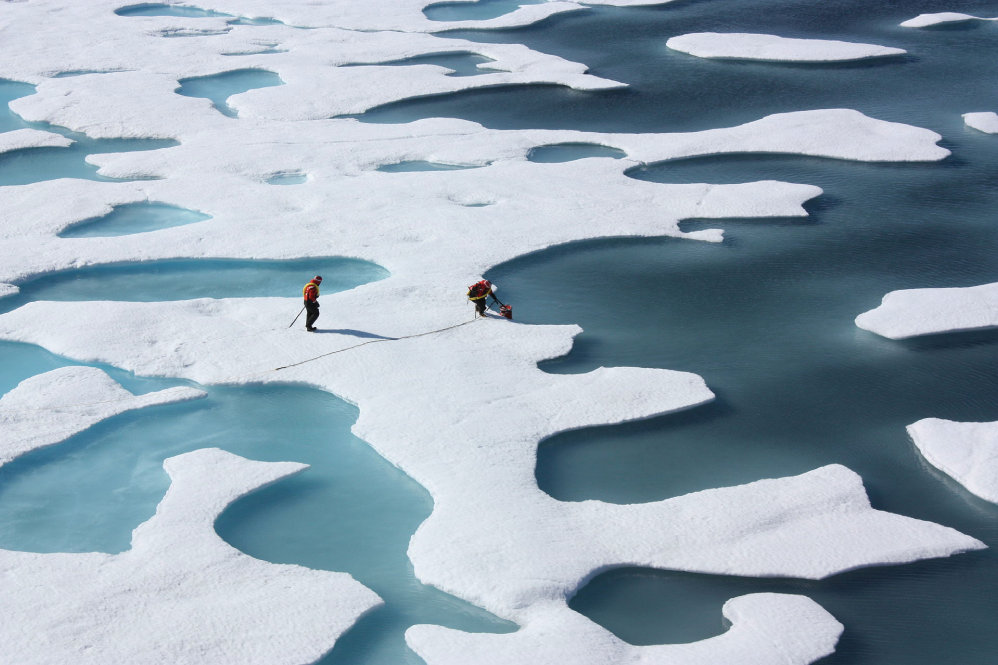 Melt pools on melting sea-ice. Every summer, newly-formed ice is threatened because of rising global temperatures. - Image Credit NASA