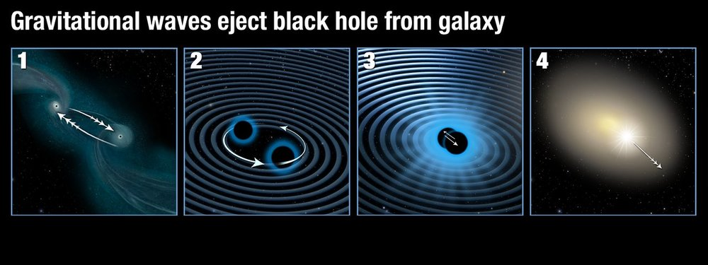 This illustration shows how two supermassive black holes merged to form a single black hole which was then ejected from its parent galaxy. Panel 1: Two galaxies are interacting and finally merging with each other. The supermassive black holes in their centres are attracted to each other. Panel 2: As soon as the supermassive black holes get close they start orbiting each other, in the process creating strong gravitational waves. Panel 3: As they radiate away gravitational energy the black holes move closer to each other over time and finally merge. Panel 4: If the two black holes do not have the same mass and rotation rate, they emit gravitational waves more strongly along one direction. When the two black holes finally collide, they stop producing gravitational waves and the newly merged black hole then recoils in the opposite direction to the strongest gravitational waves and is shot out of its parent galaxy. - Image Credit: NASA, ESA/Hubble, and A. Feild/STScI
