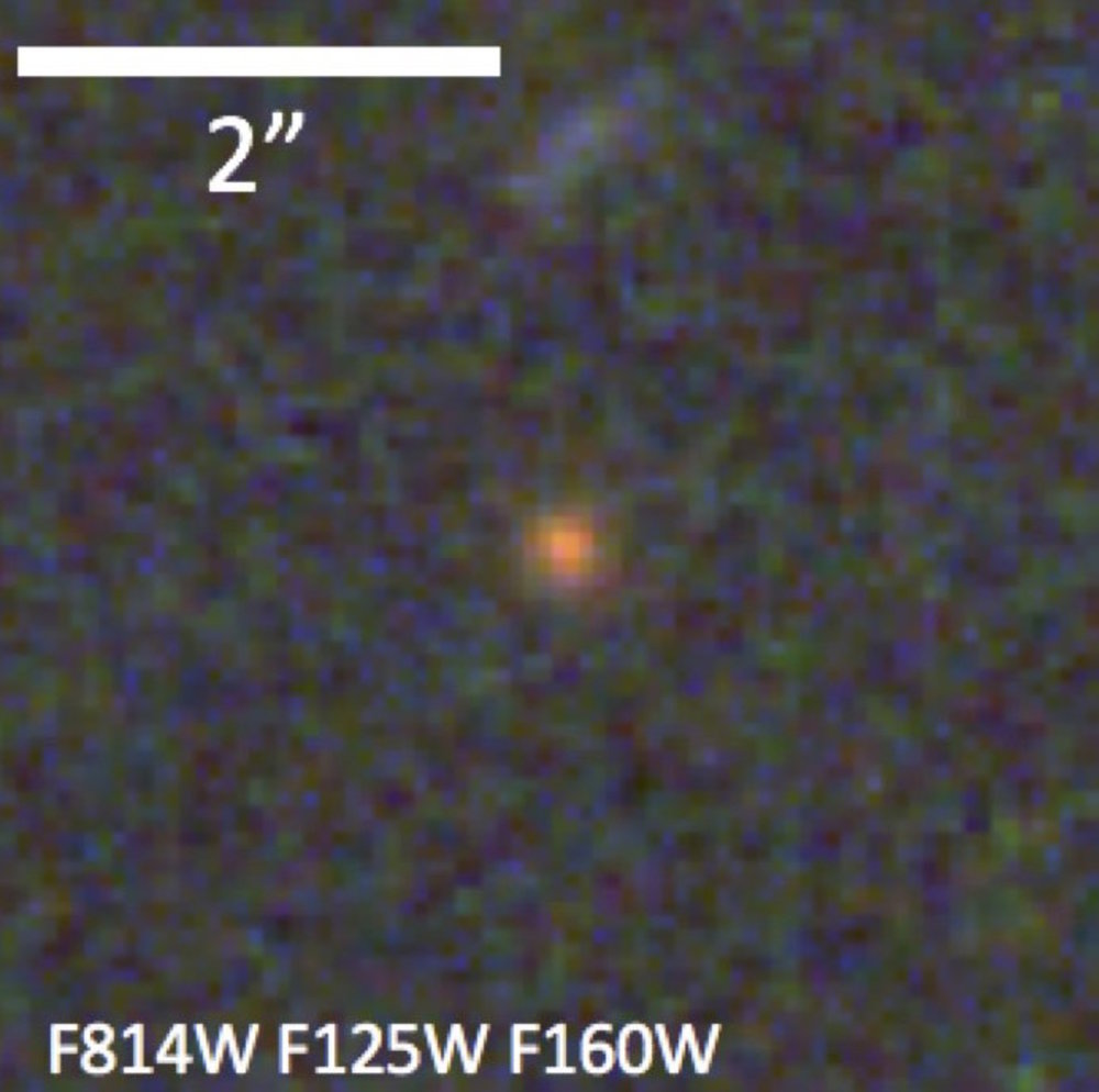 This is what ZF-COSMOS-20115 really looks like (compared to the artist's impression, top) in a close-up view. Even with Hubble's 0.2-arcsec spatial resolution the object appears barely resolved due to its extreme compactness. - Author provided