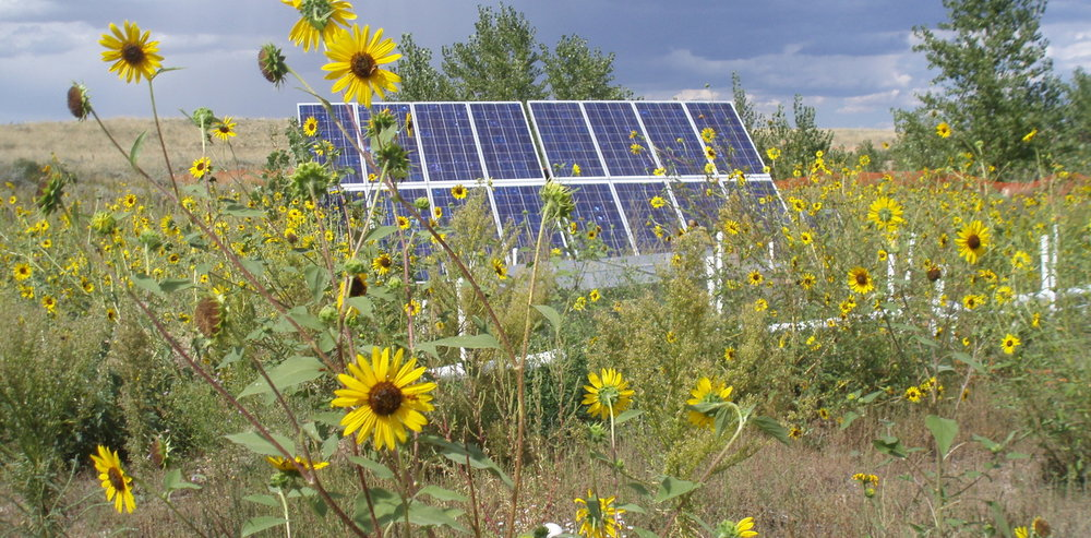 Solar panels power a buried electrolytic barrier removing contaminants from groundwater. - Image Credit: Thomas Sale, CSU, Author provided