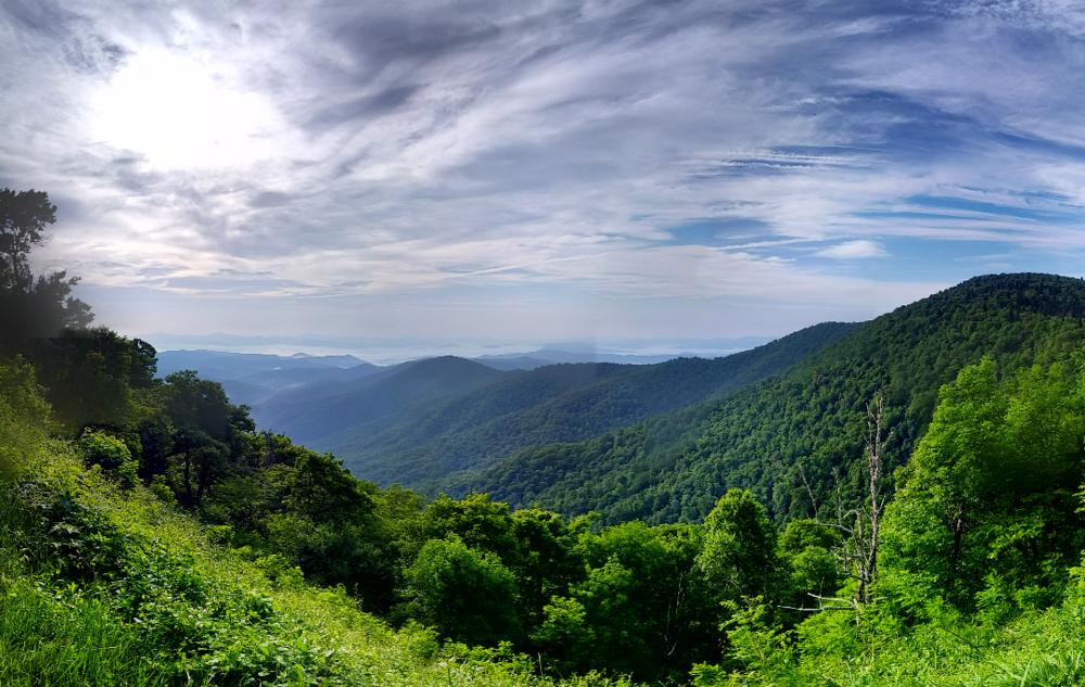 Pisgah National Forest, North Carolina. - Image Credit:  Tjss99/Flickr ,  CC BY-NC