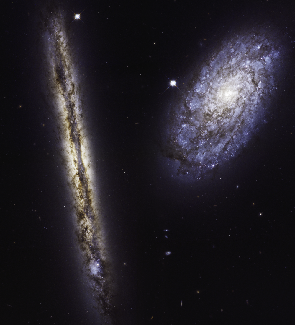 Hubble Space Telescope images of spiral galaxies NGC 4302 (left) and NGC 4298 (right) in visible and infrared light. - Image Credits: NASA, ESA, and M. Mutchler (STScI) - Click to enlarge