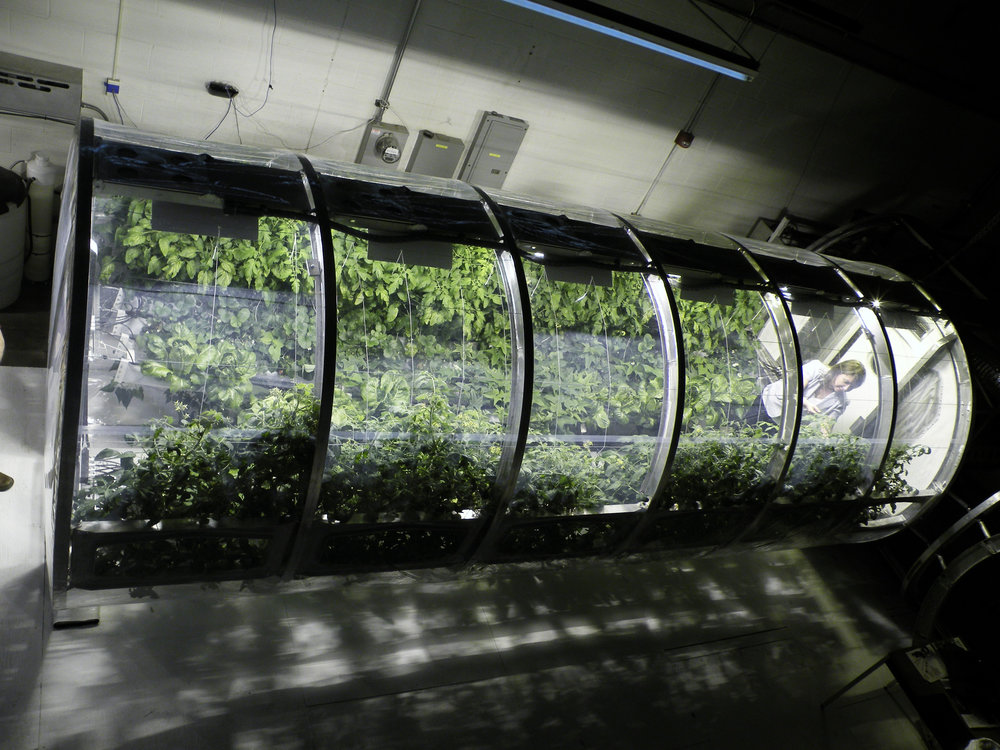 At the University of Arizona's Controlled Environment Agriculture Center, an 18 foot long, 7 foot, 3 inch diameter lunar greenhouse chamber is equipped as a prototype bioregenerative life support system. - Image Credits: University of Arizona
