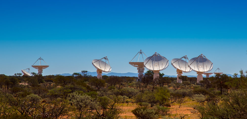 ASKAP antennas during fly's-eye observing. All the antennas point in different directions. - Image Credit: Kim Steele (Curtin University),Author provided