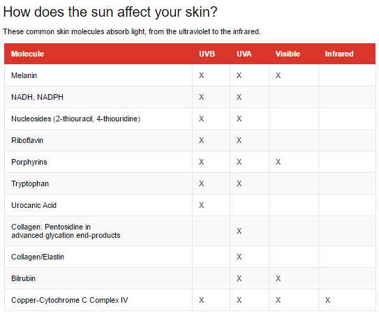 Image Credit: The Conversation / Source:  Augmenting Skin Photoprotection Beyond Sunscreens, Ch 26   Get the data