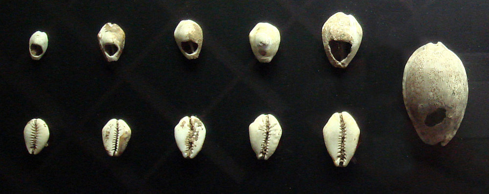 Chinese shell money from 3,000 years ago. - Image Credit:  PHGCOM ,  CC BY-SA