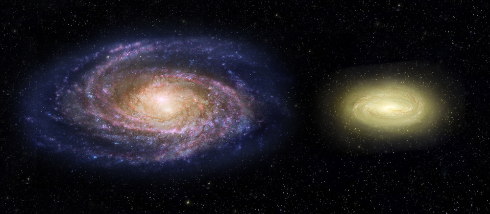 This artist's concept shows what the young, dead, disk galaxy MACS2129-1, right, would look like when compared with the Milky Way galaxy, left. Although three times as massive as the Milky Way, it is only half the size. MACS2129-1 is also spinning more than twice as fast as the Milky Way. Note that regions of Milky Way are blue from bursts of star formation, while the young, dead galaxy is yellow, signifying an older star population and no new star birth. - Image Credits: NASA, ESA, and Z. Levy (STScI)