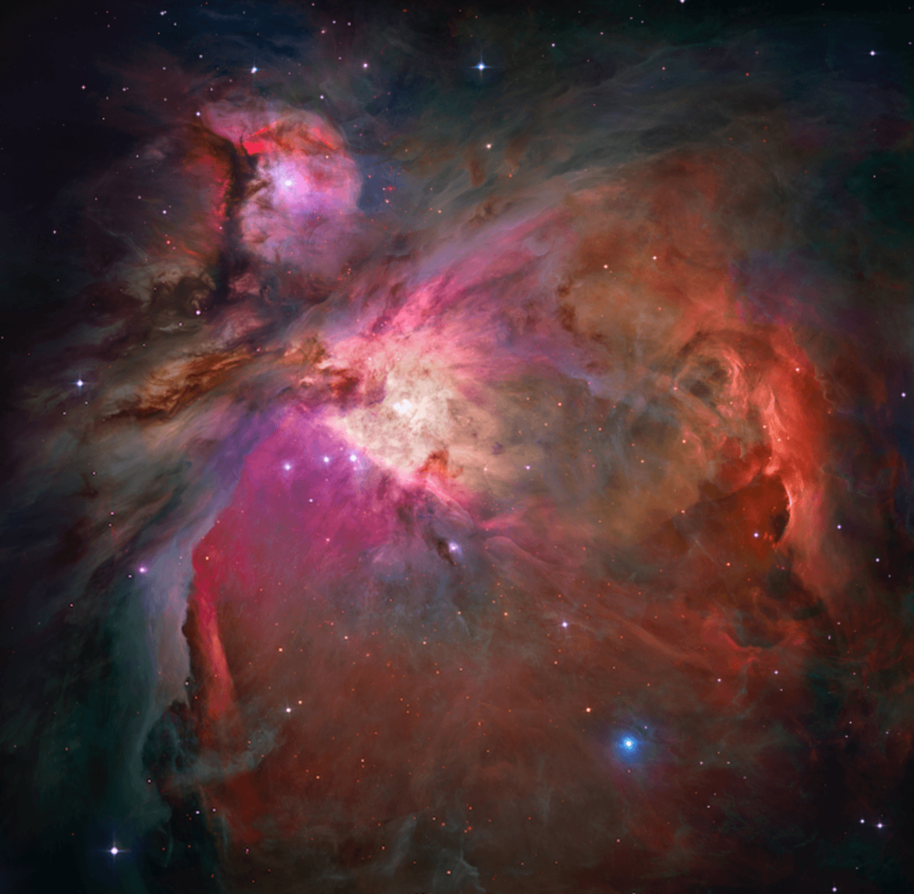 Orion Nebula. - Image Credit:  Wikimedia