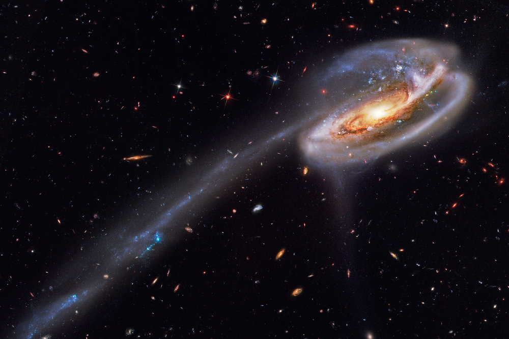The Tadpole Galaxy, a disrupted spiral galaxy, shows streams of gas stripped by gravitational interaction with another galaxy. Molecular gas is the required ingredient to form stars in early universe galaxies. - Photo: Hubble Legacy Archive, European Space Agency, NASA, Bill Snyder