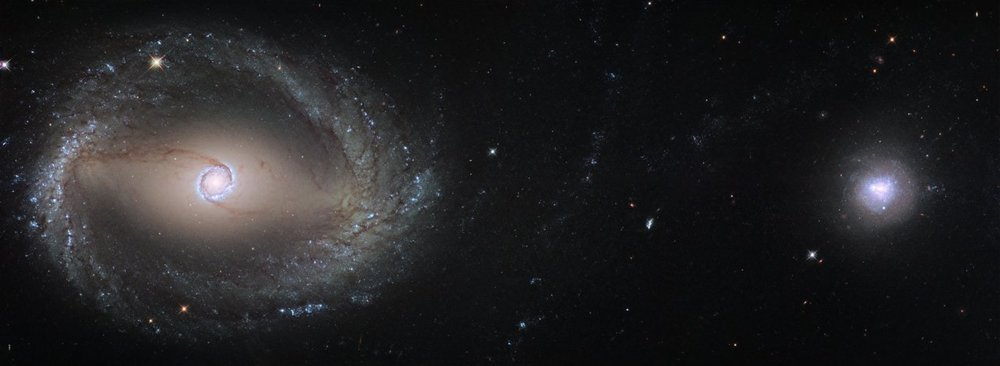 This composite image, created out of two different pointings from Hubble, shows the barred spiral galaxy NGC 1512 (left) and the dwarf galaxy NGC 1510 (right). Both galaxies are about 30 million light-years away from Earth and currently in the process of merging. At the end of this process NGC 1512 will have cannibalised its smaller companion.- Image Credit : ESA/Hubble, NASA