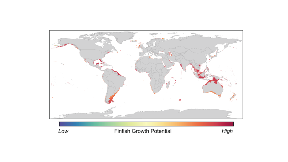 Global hotspots for finfish aquaculture. - Image Credit: Adapted from Gentry et al., Nature Ecology & Evolution 1, 1317–1324 (2017).,  CC BY-ND